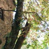 Sintra - co warto zobaczyć
